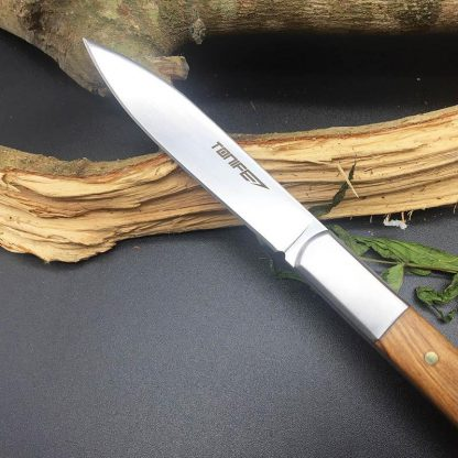 TONIFE HKT3103 Gent-H Small Fixed Knife Home Use Kitchen Fruit Knife Survival Pocket Rescue EDC Diving Knife